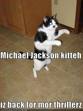 Michael Jackson kitteh iz back for mor thrillerz