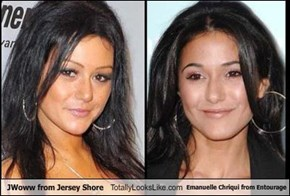 JWoww from Jersey Shore Totally Looks Like Emanuelle Chriqui from Entourage