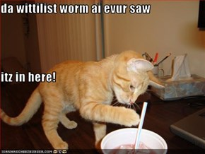 da wittilist worm ai evur saw itz in here!