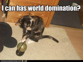I can has world domination?