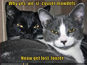 Why yes, we *iz* cuvver mawdels  Noaw get lost, loozer