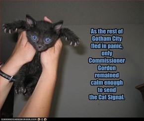 As the rest of  Gotham City  fled in panic, only Commissioner Gordon remained calm enough  to send  the Cat Signal.