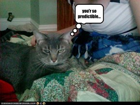 you'r so predictible...