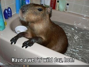 Have a wet 'n' wild day, hon!