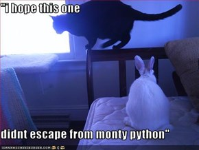 """i hope this one  didnt escape from monty python"""