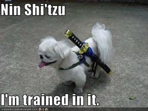 Nin Shi'tzu  I'm trained in it.