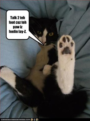 Talk 2 teh foot cuz teh paw iz feelin lay-Z.