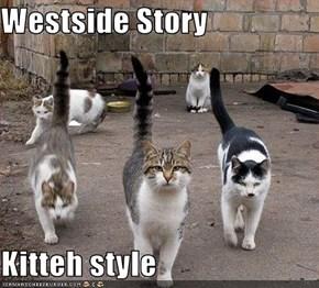 Westside Story  Kitteh style