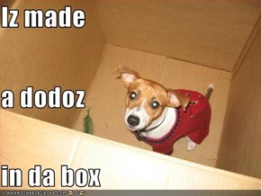 Iz made a dodoz in da box