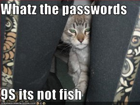 Whatz the passwords  9S its not fish