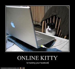 ONLINE KITTY