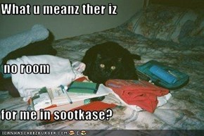 What u meanz ther iz  no room for me in sootkase?