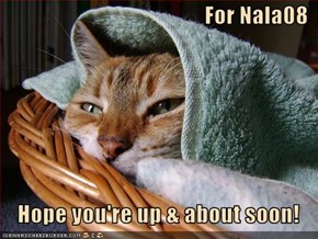 For Nala08     Hope you're up & about soon!