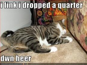i fink i dropped a quarter   dwn heer