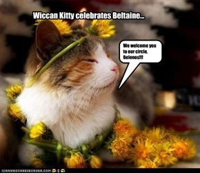 Wiccan Kitteh