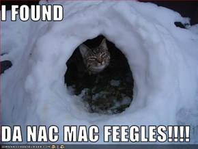 I FOUND  DA NAC MAC FEEGLES!!!!