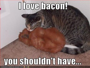 I love bacon!  you shouldn't have...