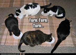 Turn, Turn, Turn...