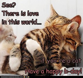 Happy birthday wishes for skepticcat!