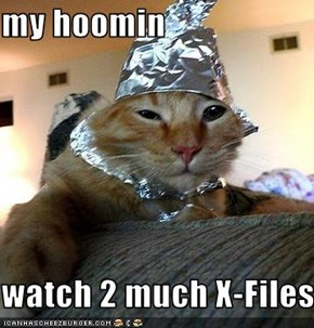my hoomin  watch 2 much X-Files
