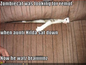 Zombiecat was looking for remot when aunti Hilda sat down Now he watz braiiiiinz