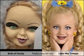 Bride of Chucky Totally Looks Like Little Miss Trimspa