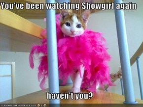 You've been watching Showgirl again  haven't you?