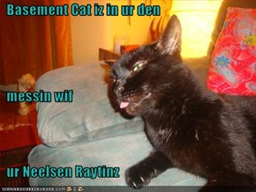 Basement Cat iz in ur den   messin wif   ur Neelsen Raytinz