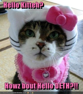 Hello Kitteh?     Howz bout Hello DETH?!!