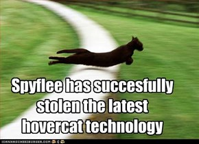 Spyflee has succesfully stolen the latest hovercat technology