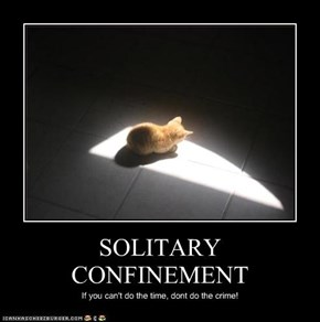 SOLITARY CONFINEMENT