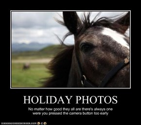 HOLIDAY PHOTOS