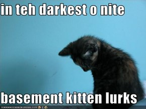 in teh darkest o nite  basement kitten lurks