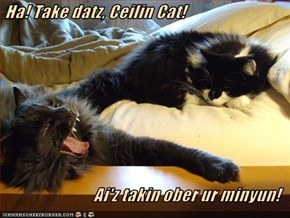 Ha! Take datz, Ceilin Cat!  Ai'z takin ober ur minyun!