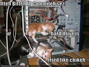 Itteh Bitteh IT Commiteh sez: ur                                      hard drive is   fried like chikeh.