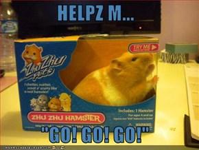 "HELPZ M...  ""GO! GO! GO!"""