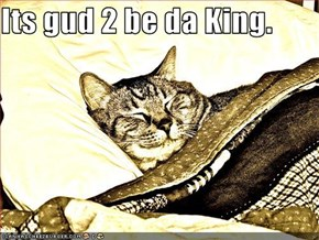 Its gud 2 be da King.
