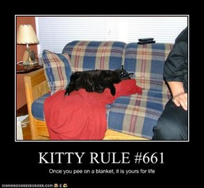 KITTY RULE #661