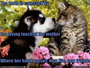 The Earth is caressed by the loving touch of the mother Where her hand passes. New life, new friends