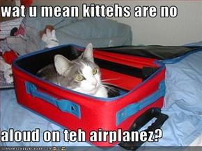 wat u mean kittehs are no  aloud on teh airplanez?