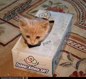 Kitteny SOFT Tishooz