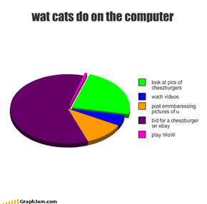 wat cats do on the computer