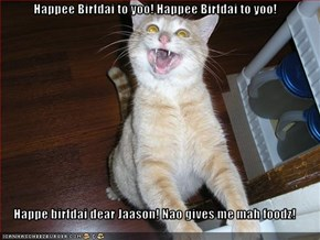Happee Birfdai to yoo! Happee Birfdai to yoo!  Happe birfdai dear Jaason! Nao gives me mah foodz!