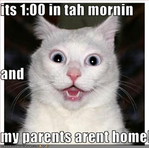 its 1:00 in tah mornin and my parents arent home!