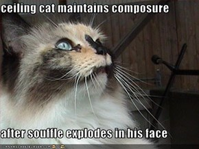 ceiling cat maintains composure  after souffle explodes in his face