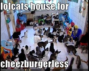 lolcats house for  cheezburgerless