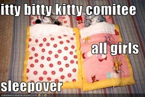 itty bitty kitty comitee all girls sleepover