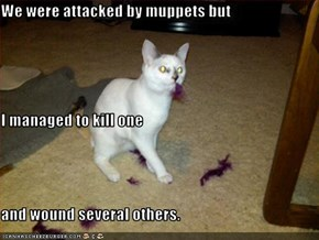 We were attacked by muppets but  I managed to kill one and wound several others.