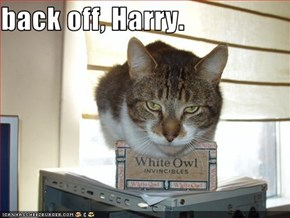 back off, Harry.
