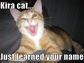 Kira cat...  Just learned your name...